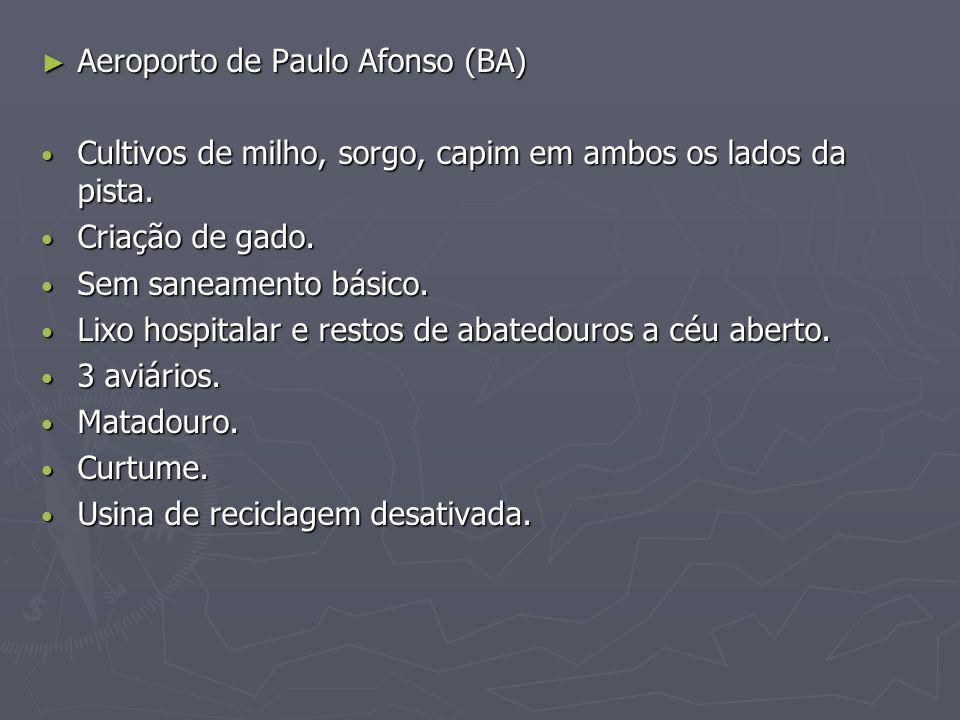 Aeroporto de Paulo Afonso (BA)
