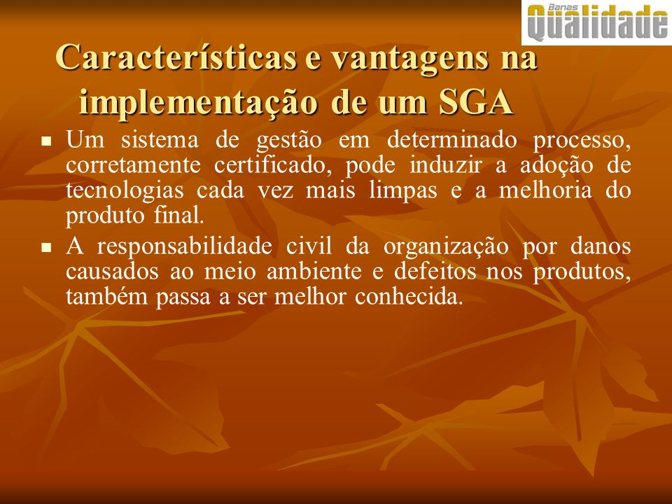 Características e vantagens na implementação de um SGA