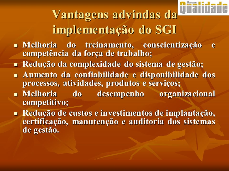 Vantagens advindas da implementação do SGI