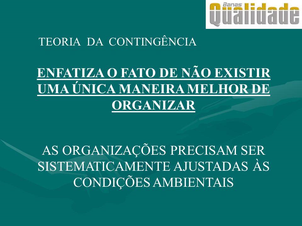 ENFATIZA O FATO DE NÃO EXISTIR UMA ÚNICA MANEIRA MELHOR DE ORGANIZAR
