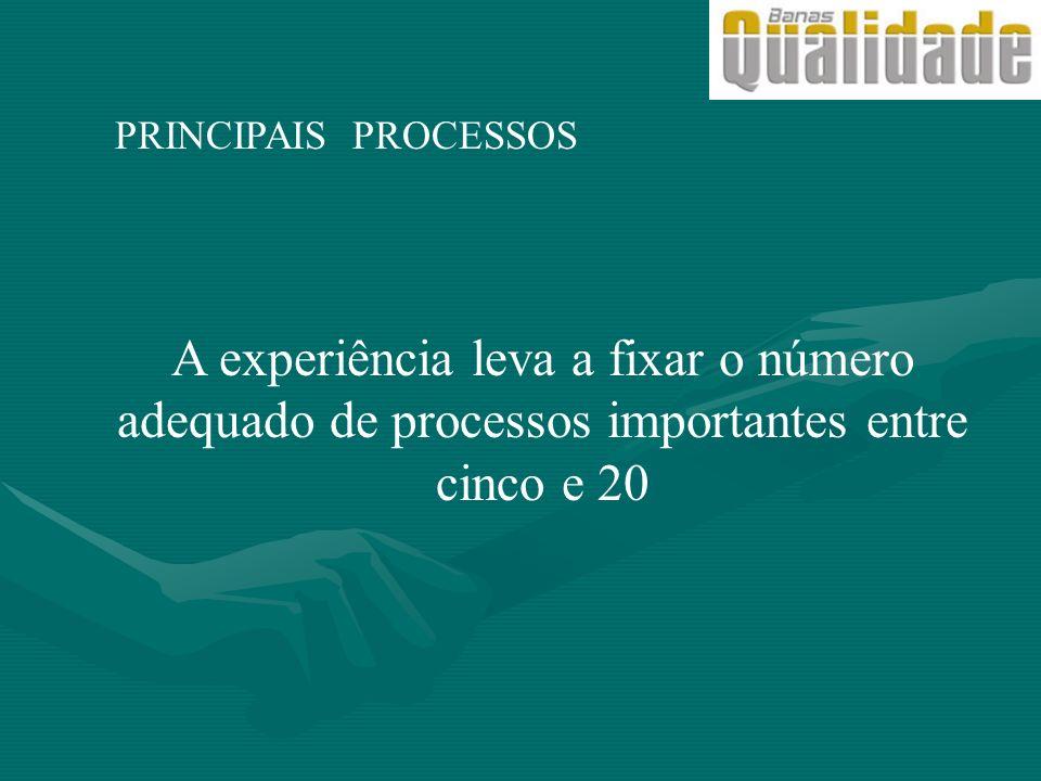 PRINCIPAIS PROCESSOS A experiência leva a fixar o número adequado de processos importantes entre cinco e 20.