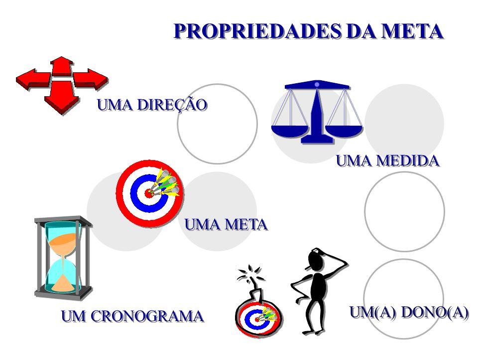 PROPRIEDADES DA META UMA DIREÇÃO UMA MEDIDA UMA META UM(A) DONO(A)