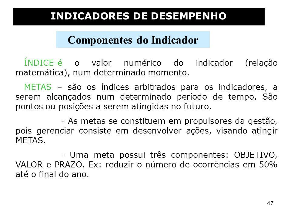 INDICADORES DE DESEMPENHO Componentes do Indicador
