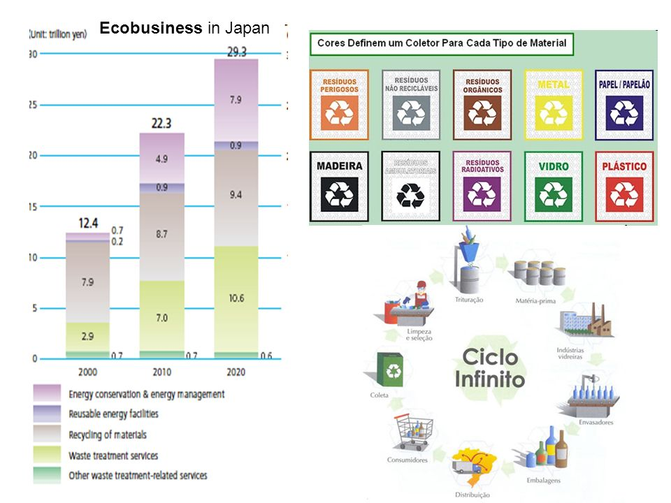 Ecobusiness in Japan