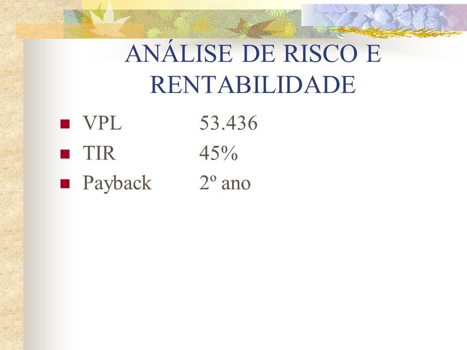 ANÁLISE DE RISCO E RENTABILIDADE