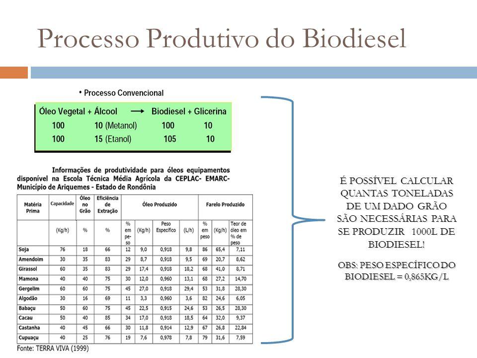 Processo Produtivo do Biodiesel