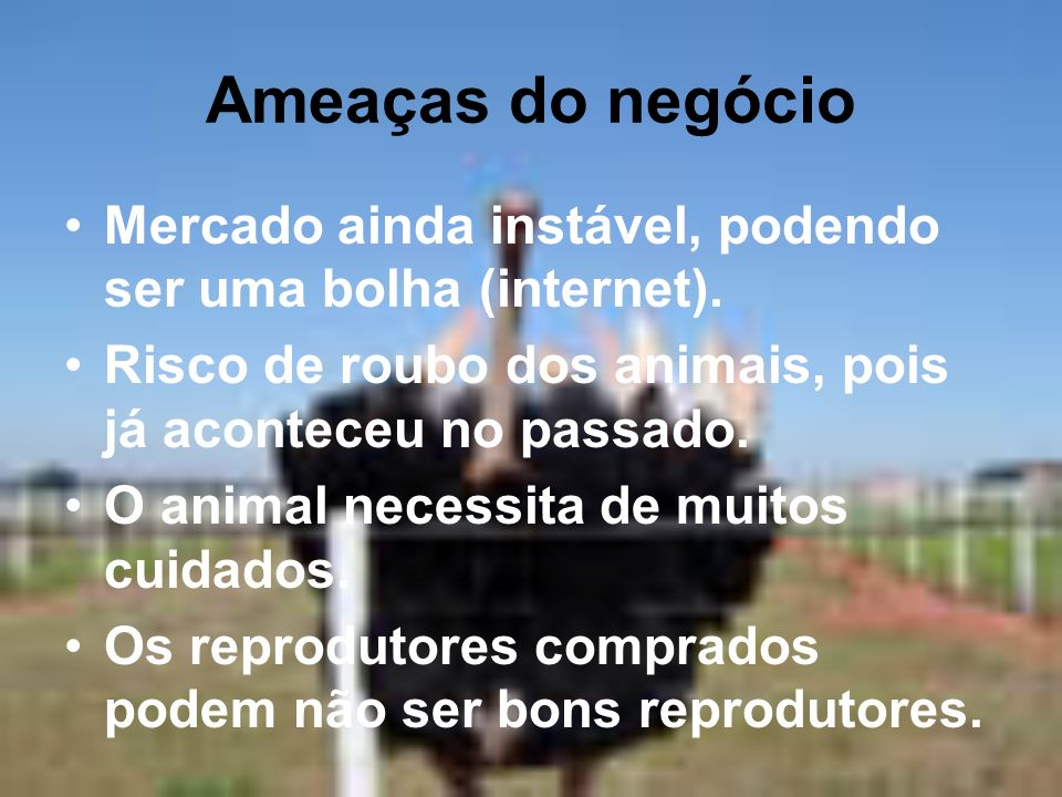Ameaças do negócio Mercado ainda instável, podendo ser uma bolha (internet). Risco de roubo dos animais, pois já aconteceu no passado.