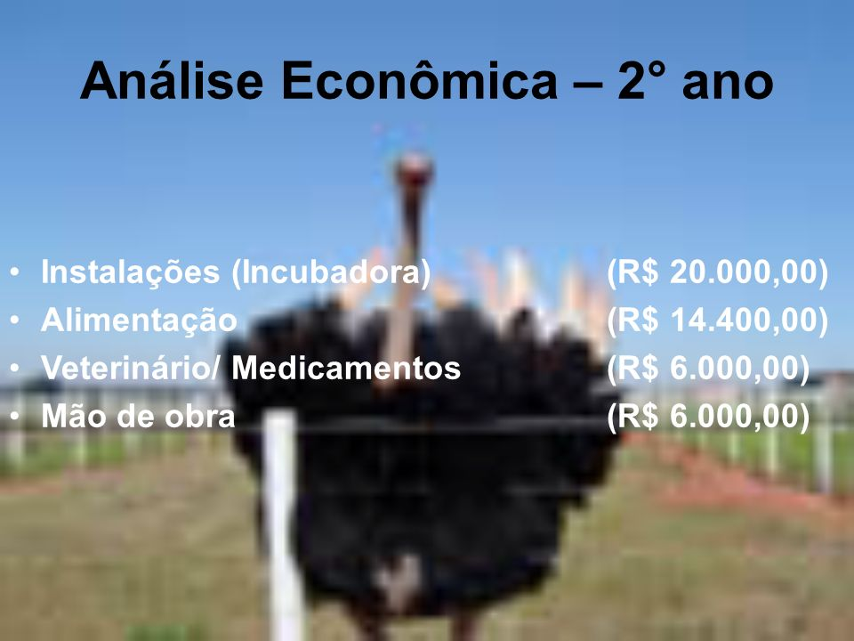 Análise Econômica – 2° ano