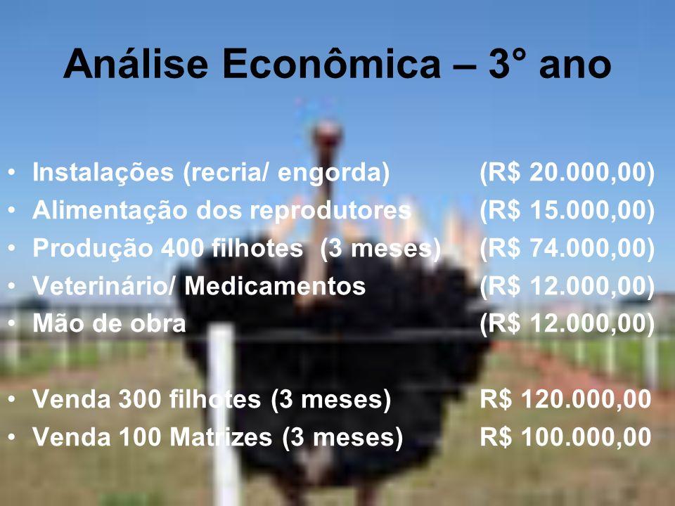 Análise Econômica – 3° ano