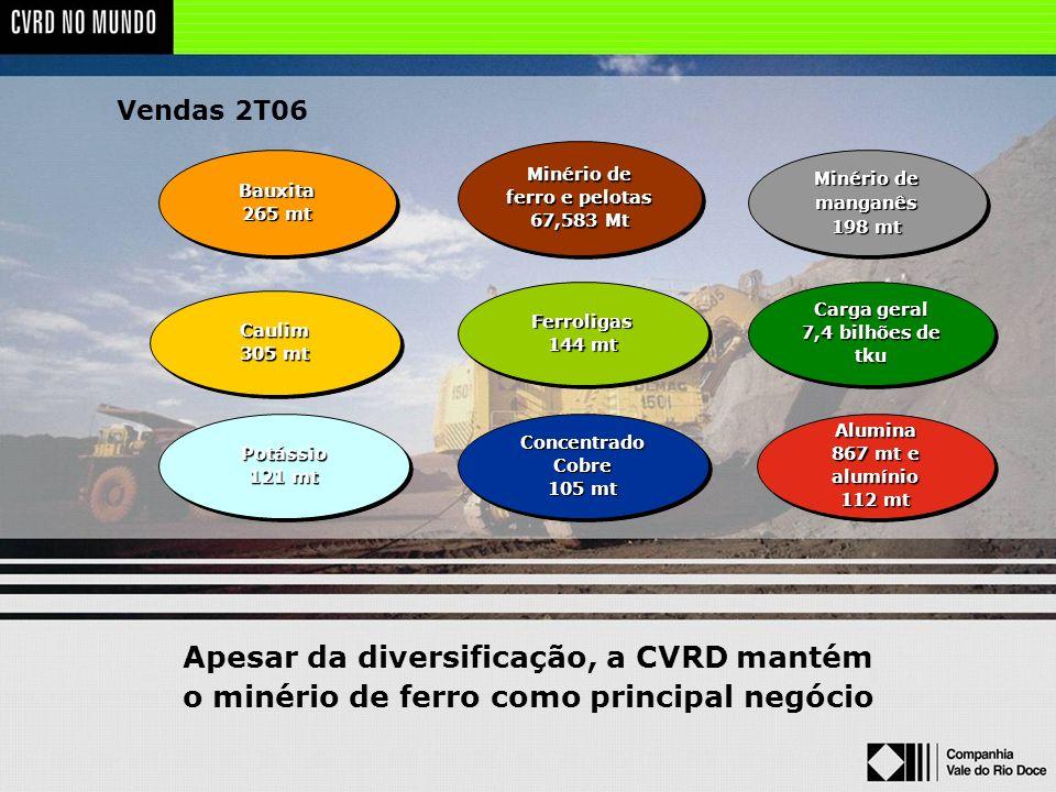 Apesar da diversificação, a CVRD mantém