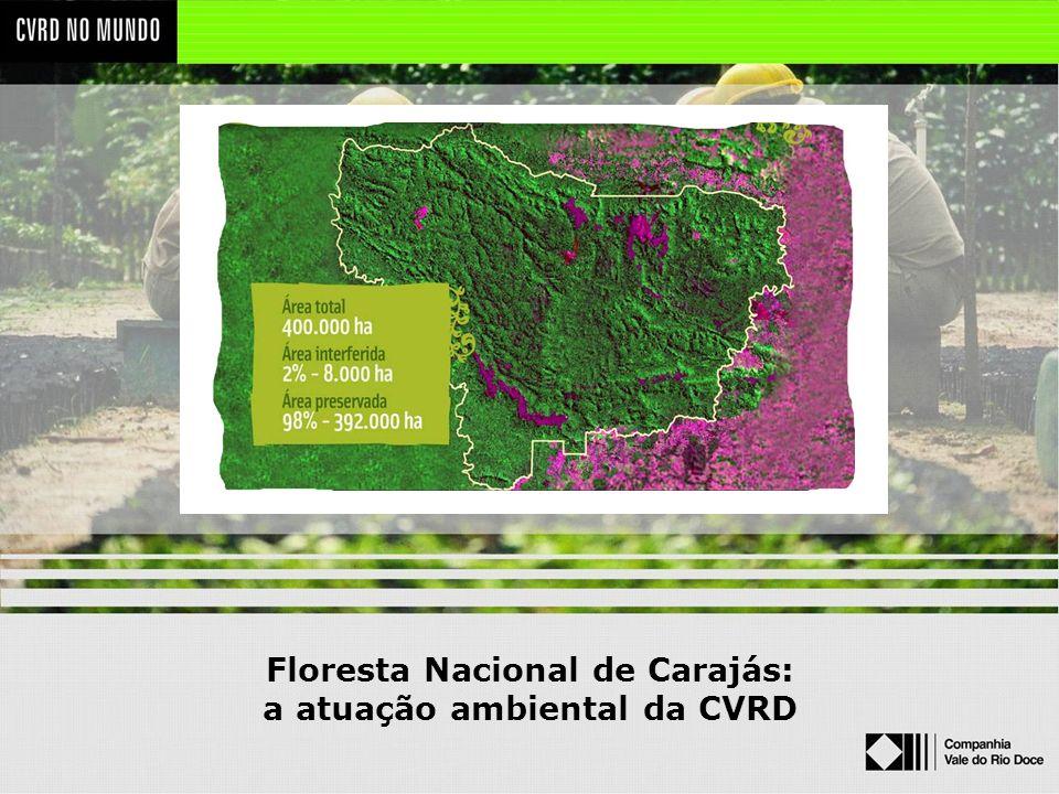Floresta Nacional de Carajás: a atuação ambiental da CVRD