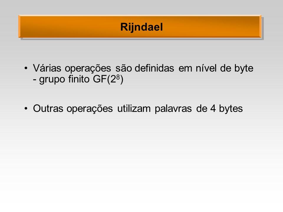 Rijndael Várias operações são definidas em nível de byte - grupo finito GF(28) Outras operações utilizam palavras de 4 bytes.