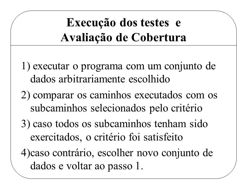 Execução dos testes e Avaliação de Cobertura