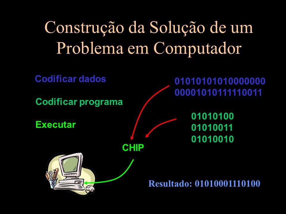 Construção da Solução de um Problema em Computador