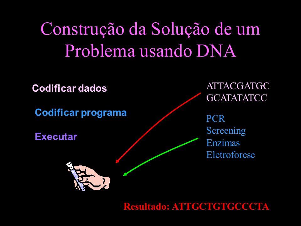 Construção da Solução de um Problema usando DNA