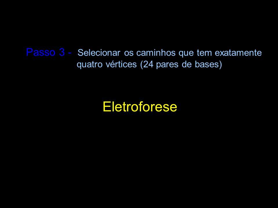 Eletroforese Passo 3 - Selecionar os caminhos que tem exatamente