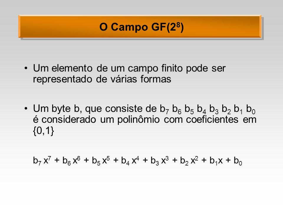 O Campo GF(28) Um elemento de um campo finito pode ser representado de várias formas.