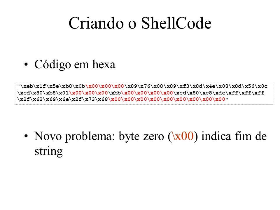 Criando o ShellCode Código em hexa