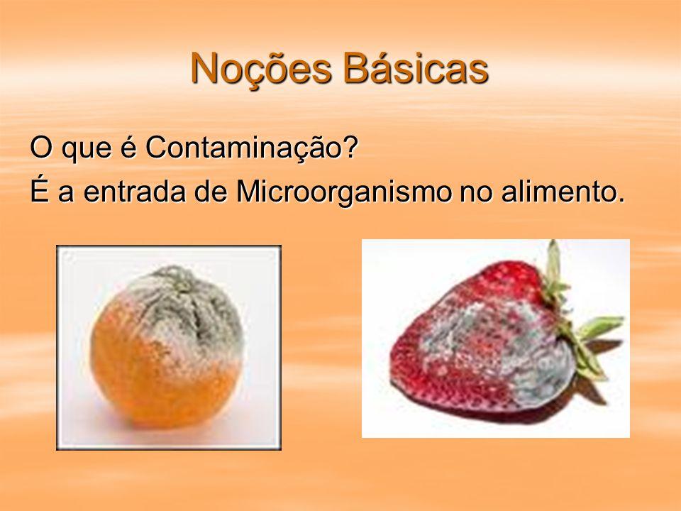 Noções Básicas O que é Contaminação