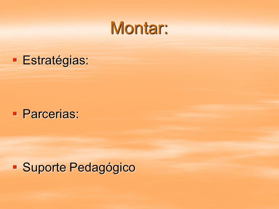 Montar: Estratégias: Parcerias: Suporte Pedagógico