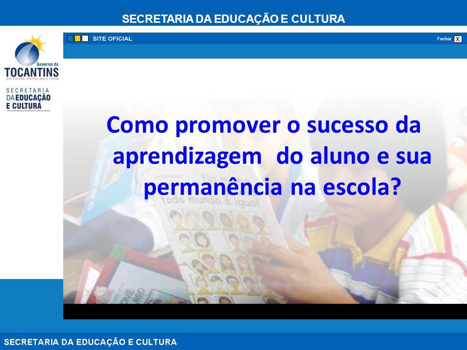 Como promover o sucesso da aprendizagem do aluno e sua permanência na escola