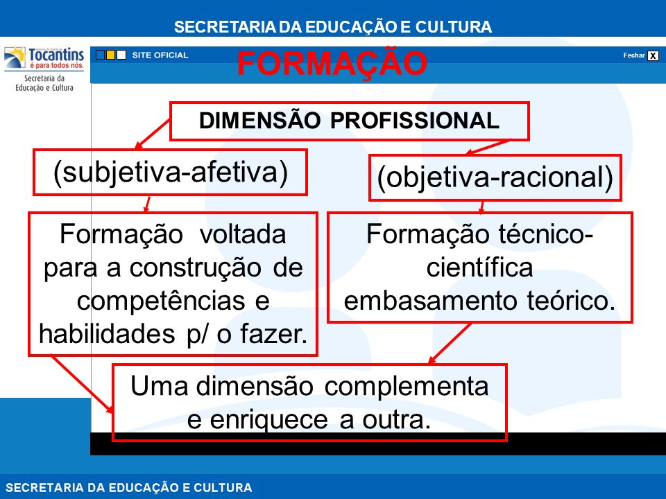 DIMENSÃO PROFISSIONAL