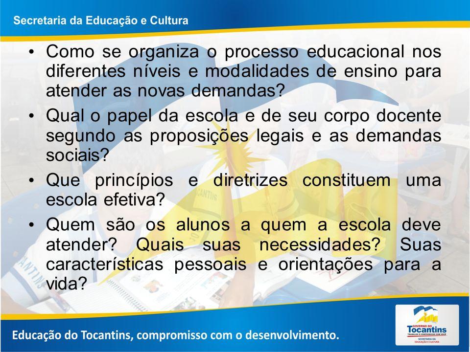 Como se organiza o processo educacional nos diferentes níveis e modalidades de ensino para atender as novas demandas
