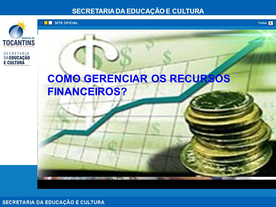 PROGESTÃO MÓDULO VI COMO GERENCIAR OS RECURSOS FINANCEIROS