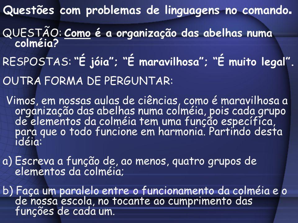 Questões com problemas de linguagens no comando.