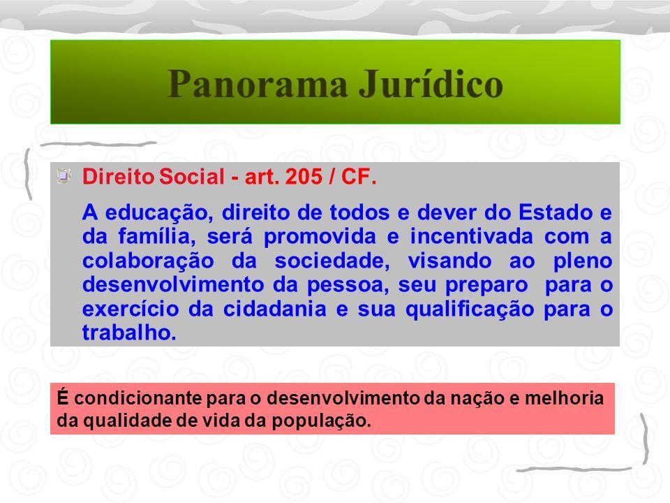 Panorama Jurídico Direito Social - art. 205 / CF.