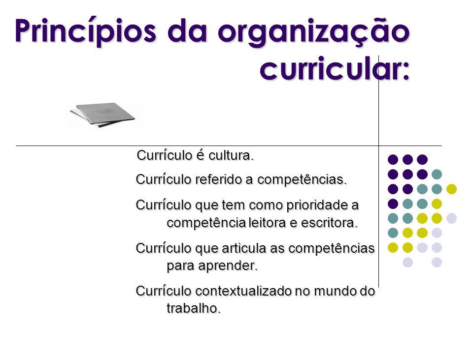 Princípios da organização curricular:
