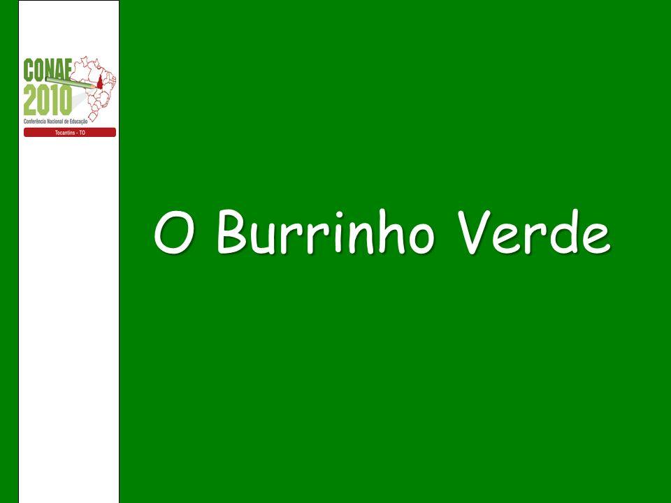 O Burrinho Verde