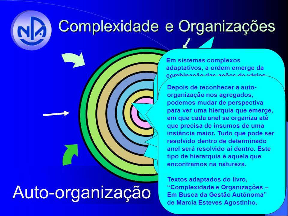 Autonomia Colaboração Agregação Auto-organização