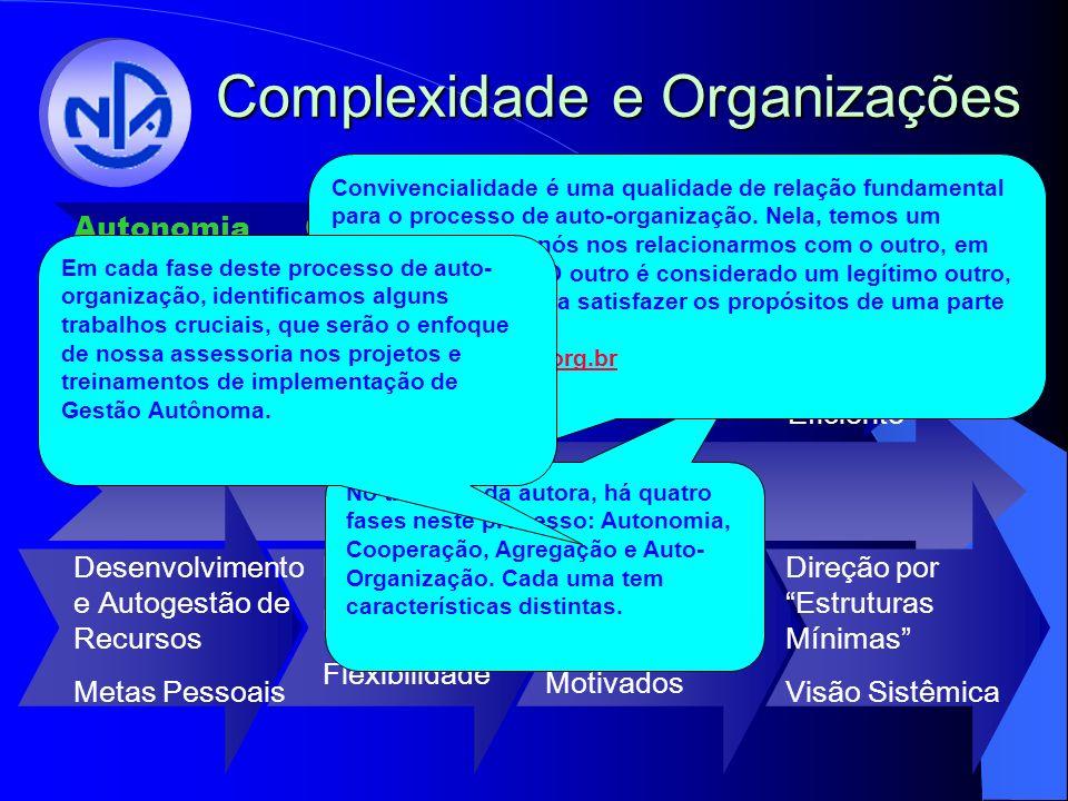 Complexidade e Organizações