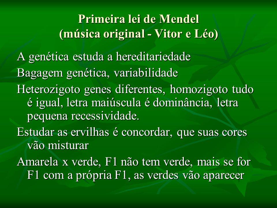 Primeira lei de Mendel (música original - Vitor e Léo)