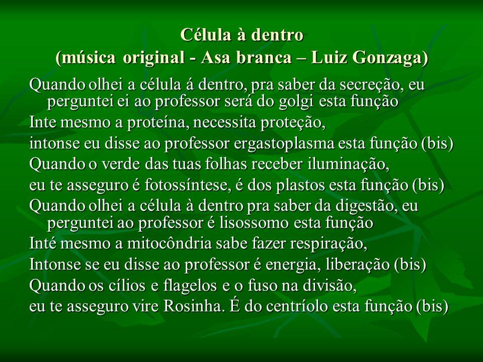 Célula à dentro (música original - Asa branca – Luiz Gonzaga)