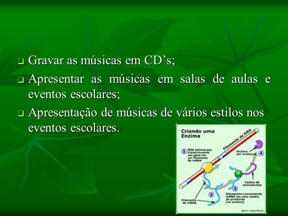 Gravar as músicas em CD's;