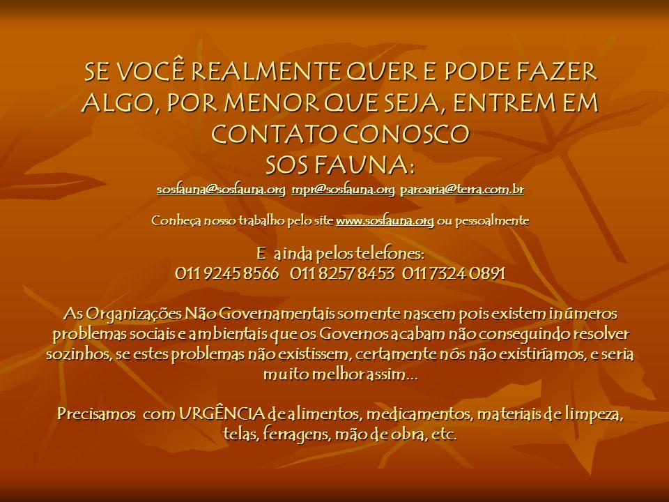SE VOCÊ REALMENTE QUER E PODE FAZER ALGO, POR MENOR QUE SEJA, ENTREM EM CONTATO CONOSCO SOS FAUNA: sosfauna@sosfauna.org mpr@sosfauna.org paroaria@terra.com.br Conheça nosso trabalho pelo site www.sosfauna.org ou pessoalmente E ainda pelos telefones: 011 9245 8566 011 8257 8453 011 7324 0891 As Organizações Não Governamentais somente nascem pois existem inúmeros problemas sociais e ambientais que os Governos acabam não conseguindo resolver sozinhos, se estes problemas não existissem, certamente nós não existiríamos, e seria muito melhor assim...