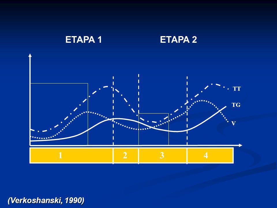 ETAPA 1 ETAPA 2. TT. TG. V. 1 2 3 4.