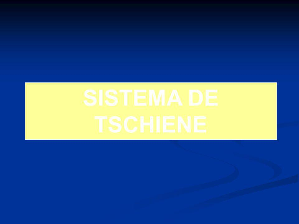SISTEMA DE TSCHIENE