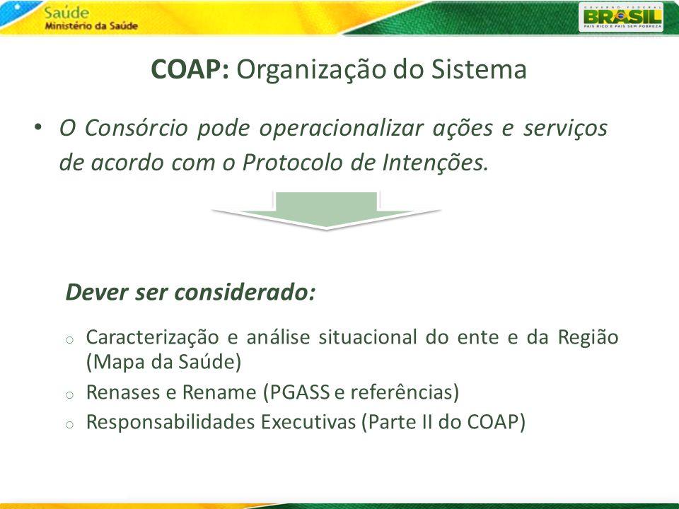 COAP: Organização do Sistema
