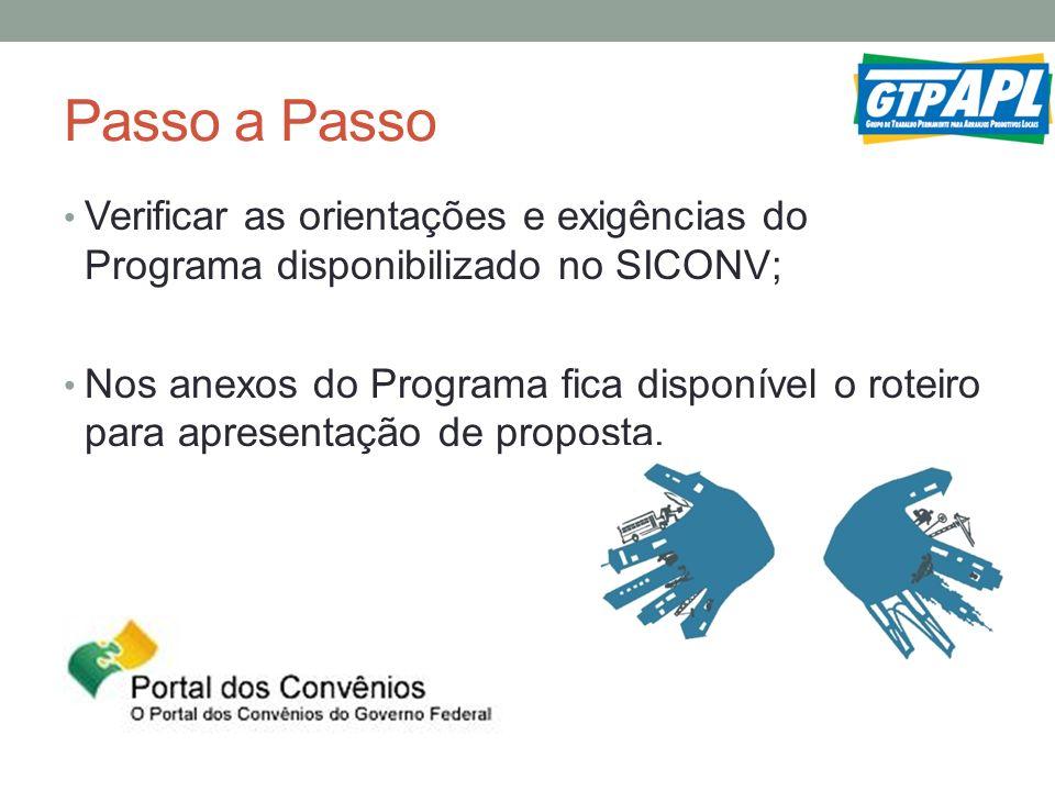 Passo a Passo Verificar as orientações e exigências do Programa disponibilizado no SICONV;