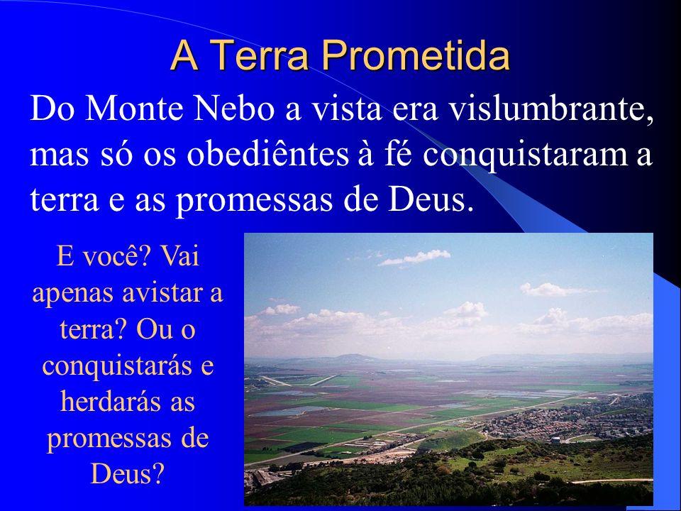 A Terra Prometida Do Monte Nebo a vista era vislumbrante, mas só os obediêntes à fé conquistaram a terra e as promessas de Deus.
