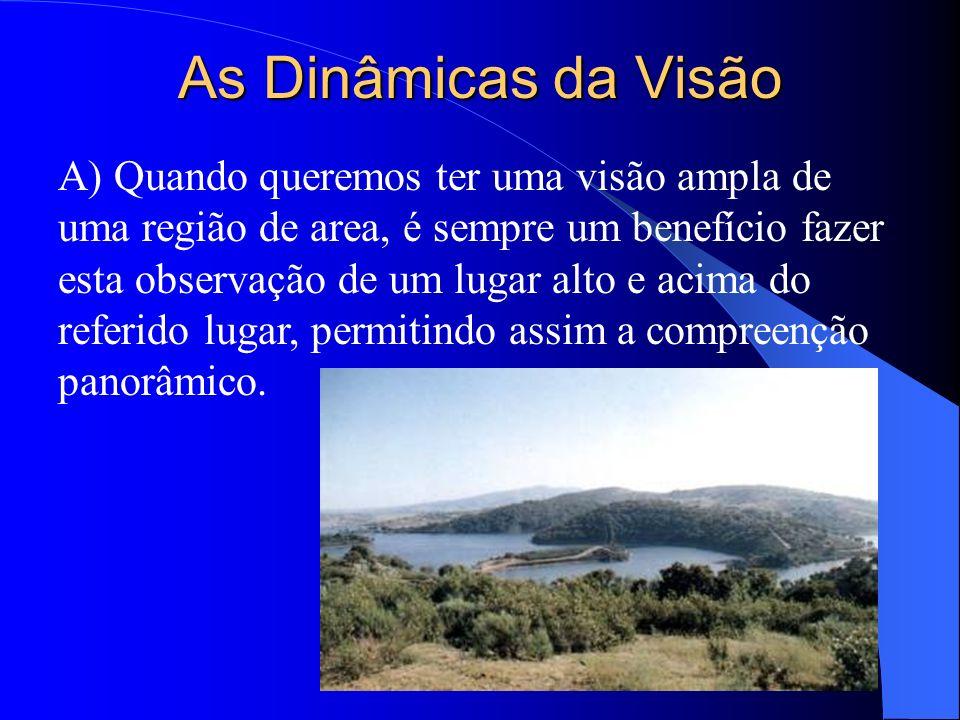 As Dinâmicas da Visão