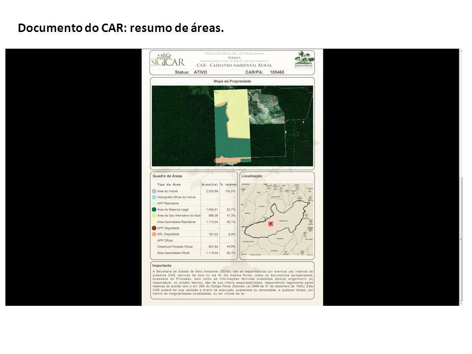 Documento do CAR: resumo de áreas.