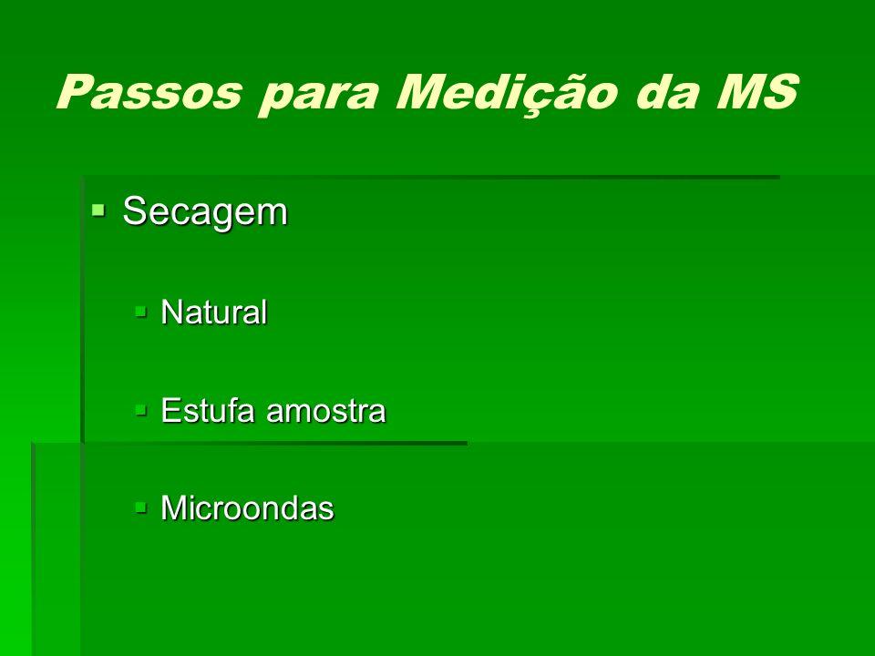 Passos para Medição da MS