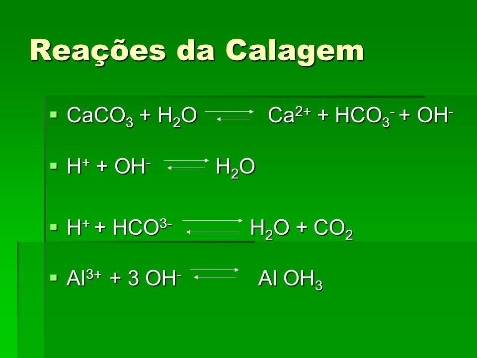 Reações da Calagem CaCO3 + H2O Ca2+ + HCO3- + OH- H+ + OH- H2O