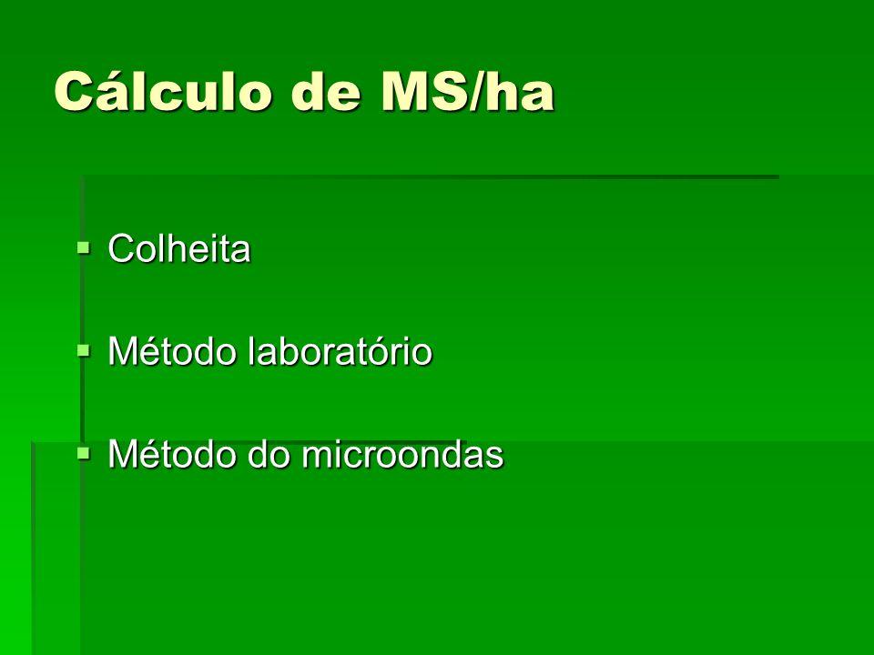 Cálculo de MS/ha Colheita Método laboratório Método do microondas