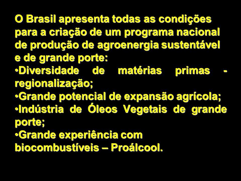 O Brasil apresenta todas as condições para a criação de um programa nacional de produção de agroenergia sustentável e de grande porte: