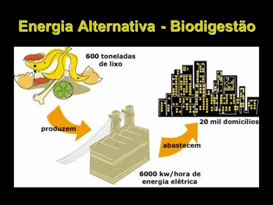 Energia Alternativa - Biodigestão